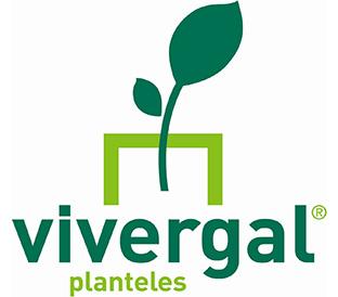 Vivergal Planteles