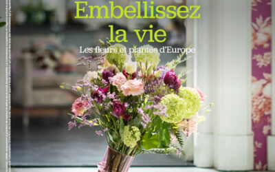 """""""Shine on"""" the new promotional campaign  for European flowers and plants"""