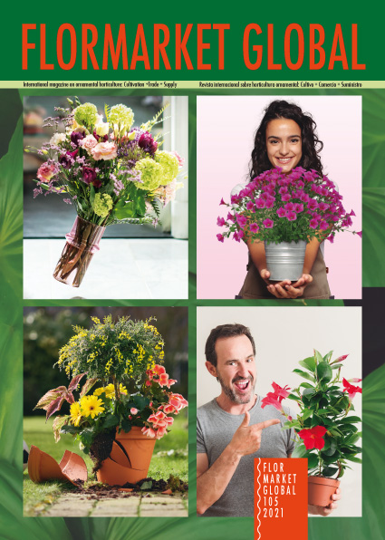 Click for receiving selection of Flormarket Global 105