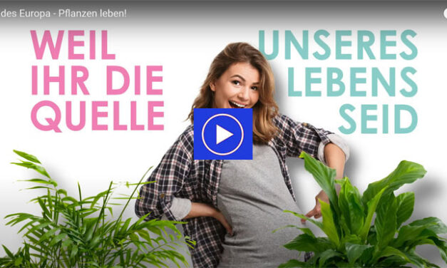 Spanish promotion campaign in German
