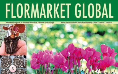 Summary Flormarket Global 106